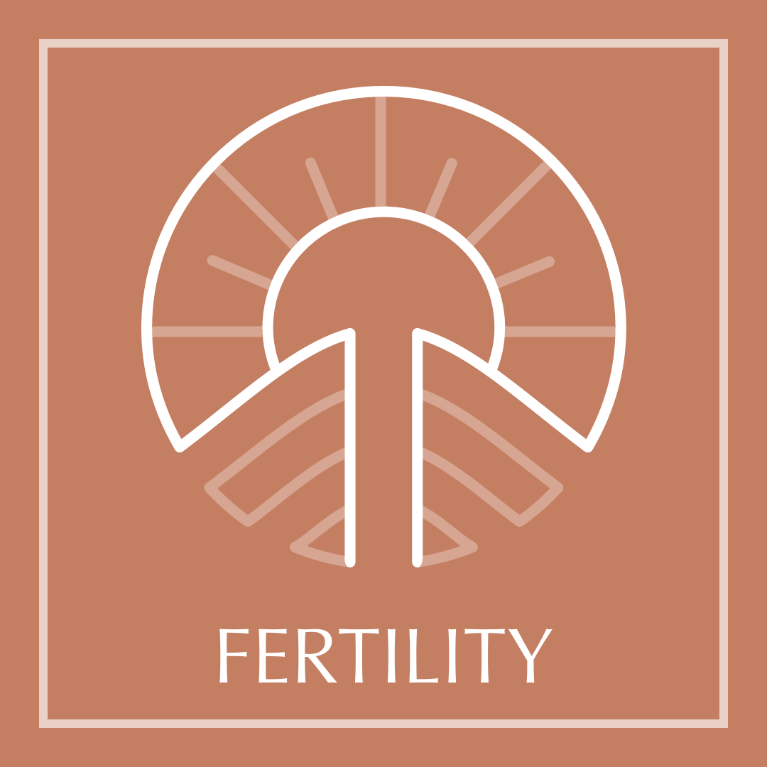 Fertility - Toowoomba Obstetrics & Gynaecology